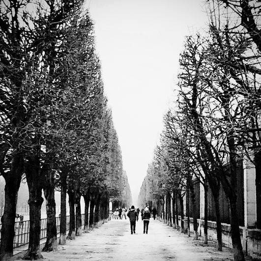 Through the Tuilleries