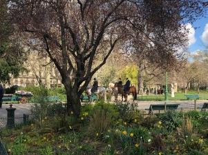 Filming in Parc Monceau